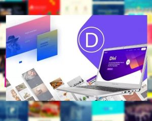 DIVI - Top Best & Number 1 Wordpress Website & Blog Theme Builder 2021
