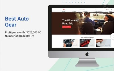 5 MILLION+ in A Year 'Car Accessories Online Dropshipping Store' By Two Stay at Home Moms [Case Study]